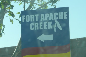 New Homes for Sale Fort Apache Creek